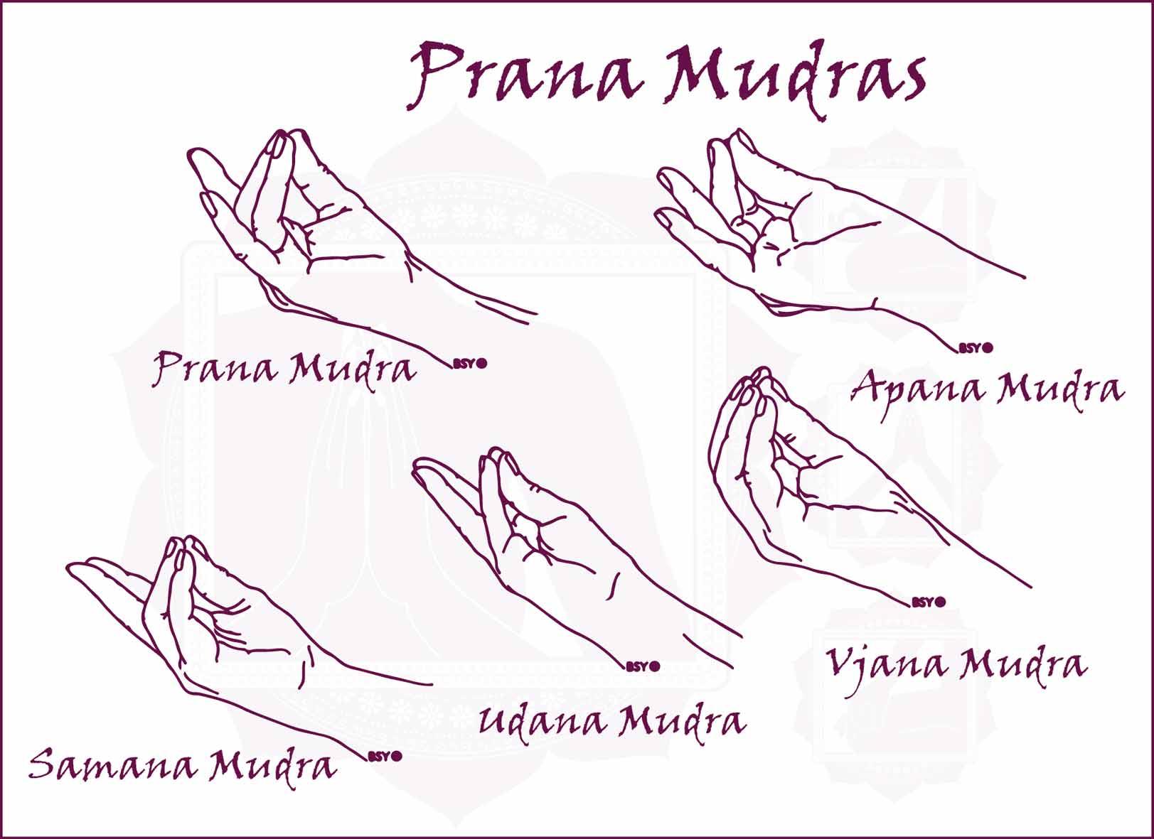 Joga Prāna Mudras
